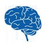 МРТ головного мозга в Улан-Удэ