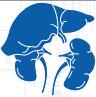 МРТ органов брюшной полости в Улан-Удэ